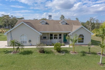 5405 241ST Street E, Myakka City, FL 34251 - MLS#: A4416716
