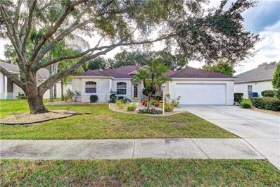 11308 Pine Lilly Place, Bradenton, FL 34202 - MLS#: A4419059