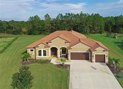2510 159TH Place E, Parrish, FL 34219 - #: A4420132