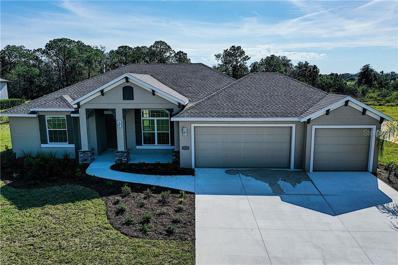 6230 Foal Creek Drive, Parrish, FL 34219 - MLS#: A4423438