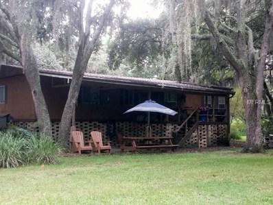 12121 Fred Drive, Riverview, FL 33578 - #: A4425269