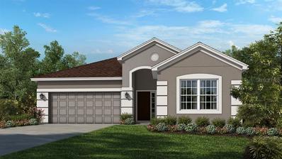 7099 Scarlet Cedar Drive, Wesley Chapel, FL 33545 - MLS#: A4425637