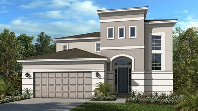 7091 Scarlet Cedar Drive, Wesley Chapel, FL 33545 - #: A4425881