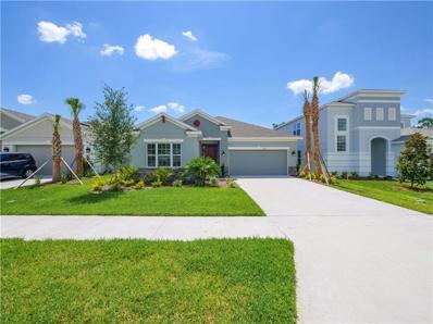 7083 Scarlet Cedar Drive, Wesley Chapel, FL 33545 - #: A4432379