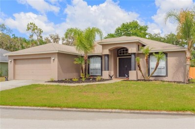 6584 Shepherd Oaks Road, Lakeland, FL 33811 - #: A4435026