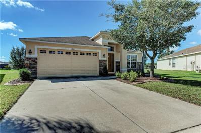 13838 Chalk Hill Place, Riverview, FL 33579 - #: A4450477