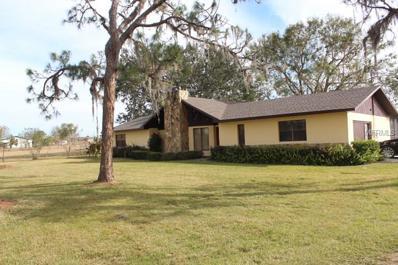 2500 Brook Road N, Fort Meade, FL 33841 - MLS#: B4700995