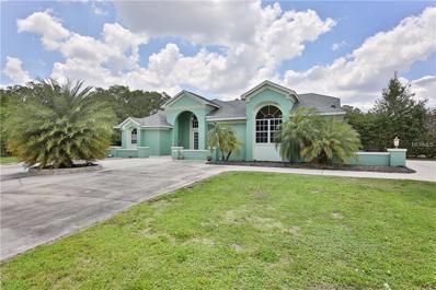 3317 SE Montgomery Circle, Arcadia, FL 34266 - MLS#: C7239649