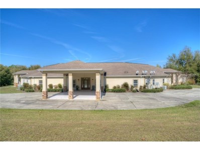 31242 Amberlea Road, Dade City, FL 33523 - MLS#: E2204230
