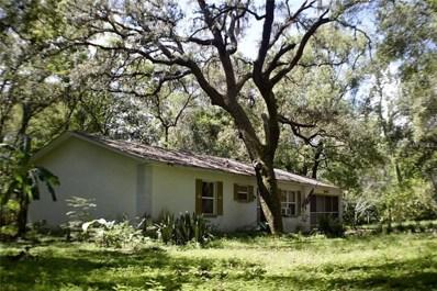 16122 Hodza Street, Brooksville, FL 34604 - MLS#: E2205200