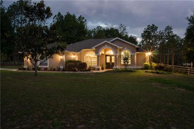 17835 Pine Knoll Drive, Dade City, FL 33523 - MLS#: E2205428