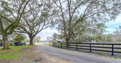 6339 Griffin Road, Brooksville, FL 34601 - MLS#: E2205649