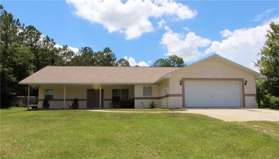 9623 Misha Lane, Dade City, FL 33525 - MLS#: E2205812