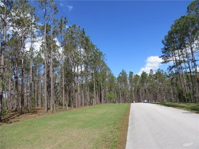 17551 Country Squire Lane, Dade City, FL 33523 - MLS#: E2205937