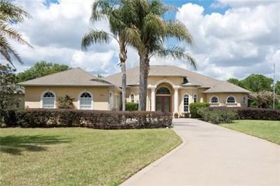 13411 Thoroughbred Drive, Dade City, FL 33525 - #: E2206012