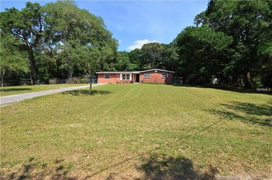14308 Old Mission Road, Dade City, FL 33525 - MLS#: E2400010