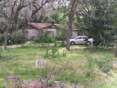 3922 Autumn Palm Drive, Zephyrhills, FL 33541 - MLS#: E2400135