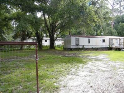 6828 Mangrove Drive, Wesley Chapel, FL 33544 - MLS#: E2400212