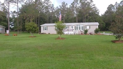 13453 Mcintosh Drive, Dade City, FL 33525 - MLS#: E2400296
