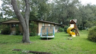 18203 Mount Olive Drive, Dade City, FL 33523 - MLS#: E2400409