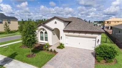 4091 Jensen Lane, Land O Lakes, FL 34638 - MLS#: E2400421