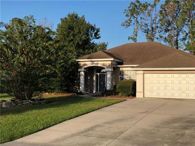 12225 Knotty Pine Loop, San Antonio, FL 33576 - MLS#: E2400710