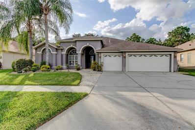 18420 Eastwyck Drive, Tampa, FL 33647 - #: E2400712