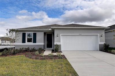 11523 Palmetto Sands Court, Tampa, FL 33626 - MLS#: E2400825