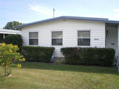 39052 Flora Avenue, Zephyrhills, FL 33542 - MLS#: E2400835
