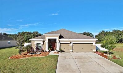 32117 Corbin Ridge Street, San Antonio, FL 33576 - MLS#: E2400849