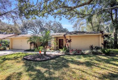 16629 Vallely Dr, Tampa, FL 33618 - #: E2400868