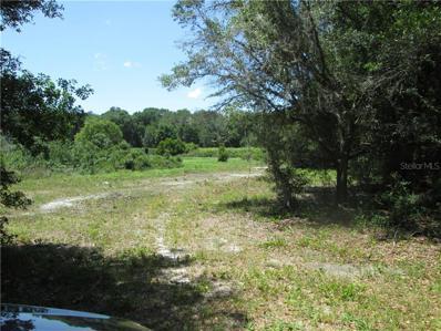 County Road 738E, Webster, FL 33597 - MLS#: G4827109