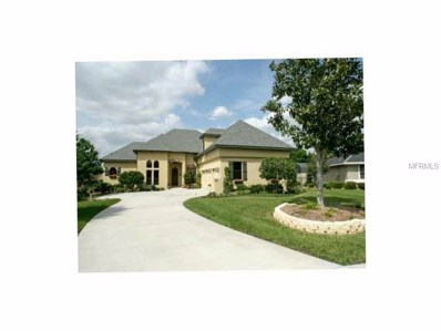 17423 Cobblestone Lane, Clermont, FL 34711 - MLS#: G4841191
