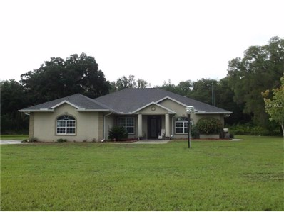 874 W C 478, Webster, FL 33597 - MLS#: G4843975