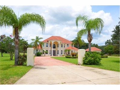 27053 Grand Oak Lane, Tavares, FL 32778 - MLS#: G4844081
