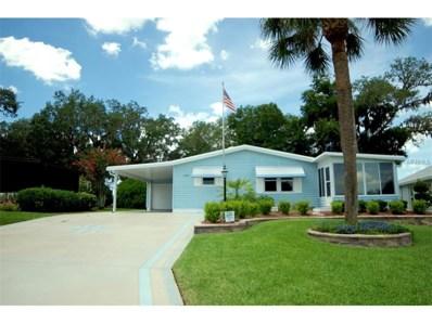 1165 Paradise Drive, Lady Lake, FL 32159 - MLS#: G4844169
