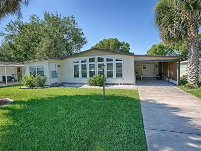 428 Mark Drive, The Villages, FL 32159 - MLS#: G4844563