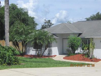 14105 Coosa Court, Clermont, FL 34711 - MLS#: G4845103