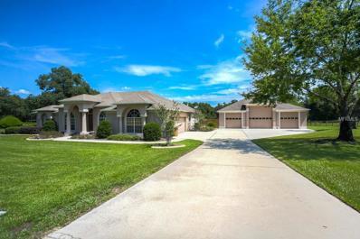 16041 Sperry Lane, Umatilla, FL 32784 - MLS#: G4845378