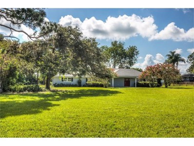 15815 Wilson Parrish Road, Umatilla, FL 32784 - MLS#: G4845433