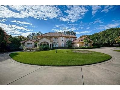 3520 Lakeshore Drive, Mount Dora, FL 32757 - MLS#: G4846137