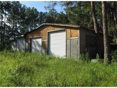 19100 County Road 33, Groveland, FL 34736 - MLS#: G4846853