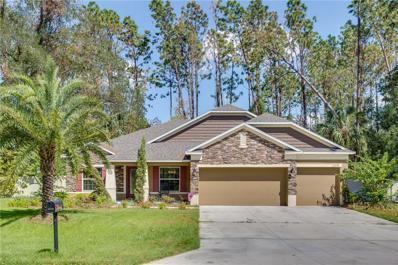23539 Stream Avenue, Sorrento, FL 32776 - MLS#: G4847653