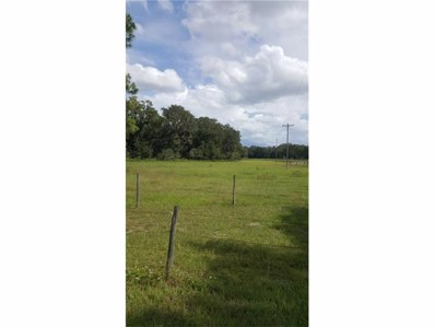 Cr 542E, Bushnell, FL 33513 - MLS#: G4848014