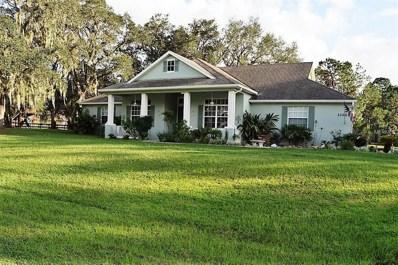 21207 Canoe Pass Street, Clermont, FL 34715 - MLS#: G4848100