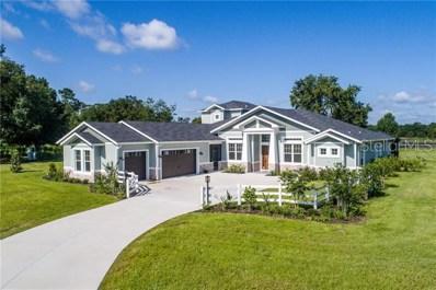 Lot E-15 Live Oak Drive, Deer Island, FL 32778 - MLS#: G4848510