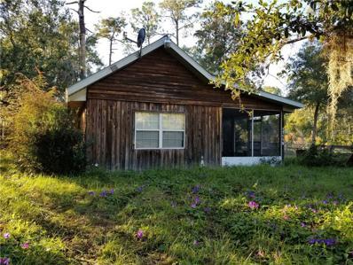 17119 County Road 48, Mount Dora, FL 32757 - MLS#: G4848734