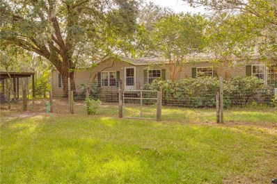 22631 Rockland Avenue, Sorrento, FL 32776 - MLS#: G4849462