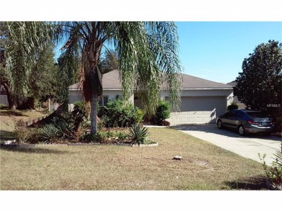 9519 Water Fern Circle, Clermont, FL 34711 - MLS#: G4849784