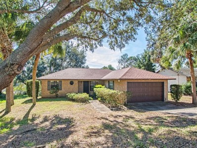 12518 Wedgefield Drive, Grand Island, FL 32735 - MLS#: G4849982